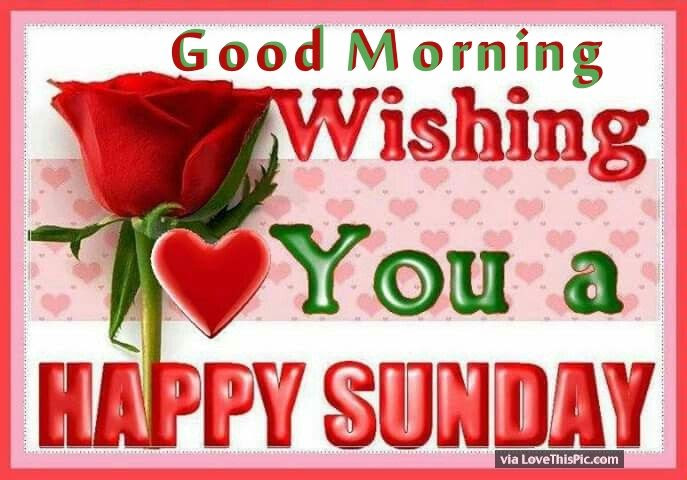 Good Morning Wishing You A Happy Sunday Pictures Photos And Images