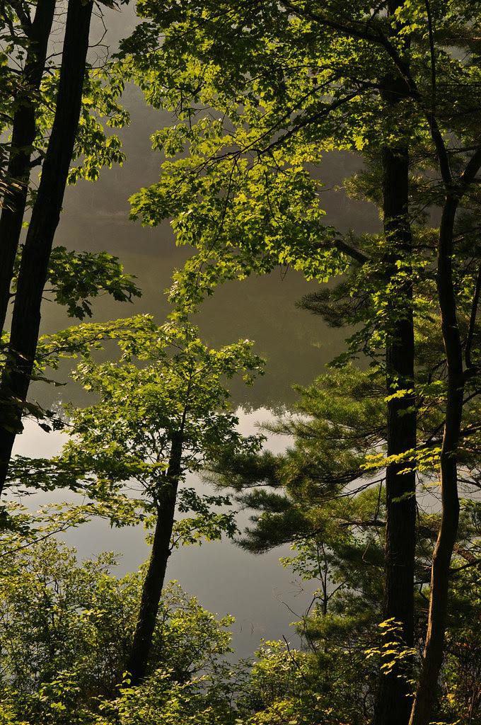 Sherando Lake (19)