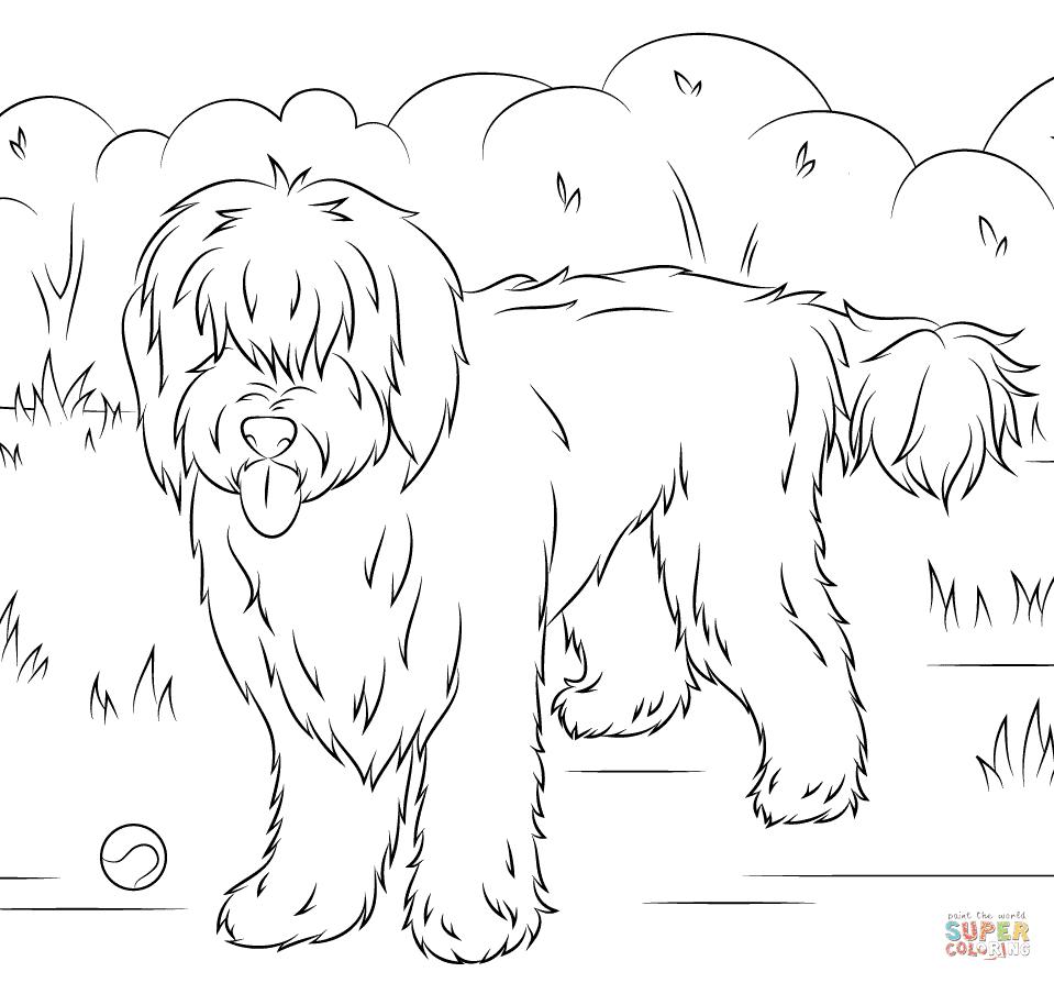 27 Gratis Malvorlage Labrador | Beste Malvorlagen