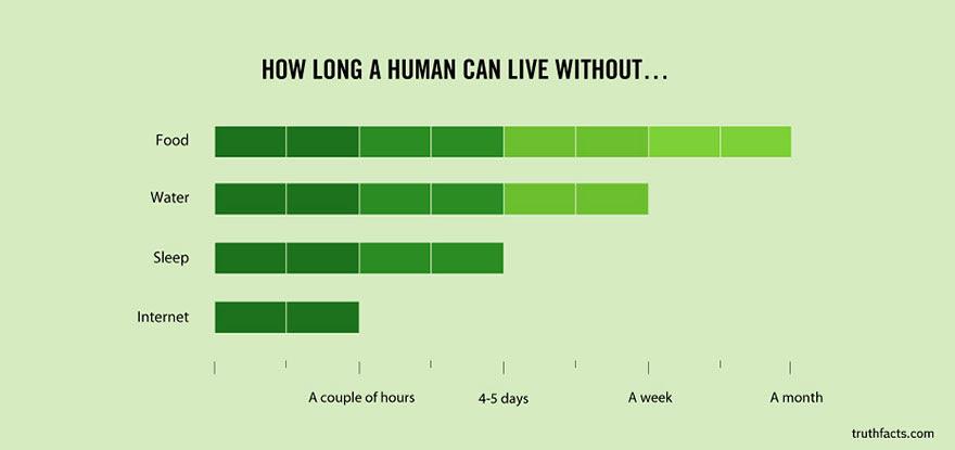 Grafik Fakta Menarik 30