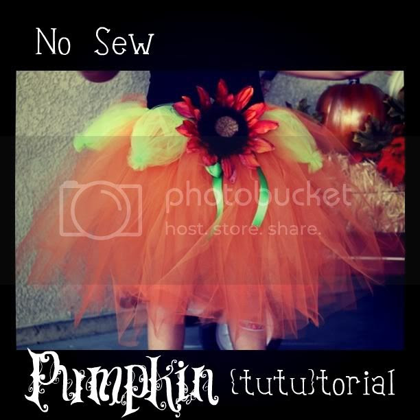 No Sew Tutu Tutorial