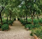 Oregon garden 3