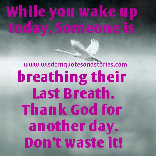 While You Wake Up Today Wisdom Quotes Stories