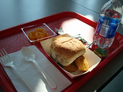School Lunch (image: krikketgirl/flickr)