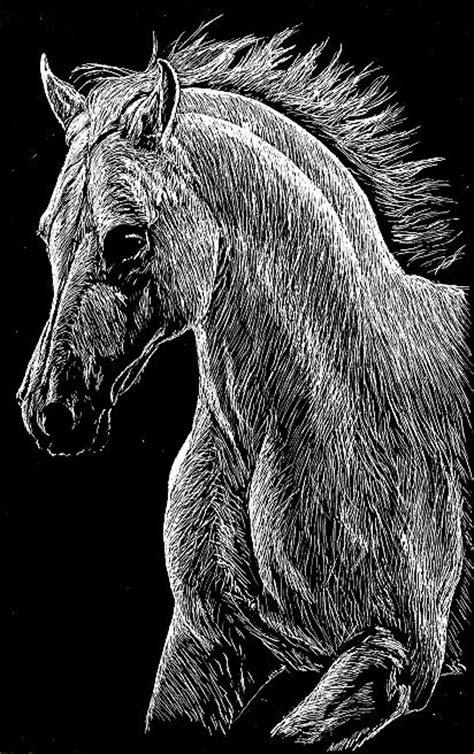 image detail  horse scratch scratch art pinterest