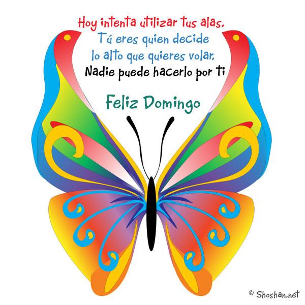 Imagen Gratis Con Frases Universales Hoy Intenta Utilizar Tus Alas