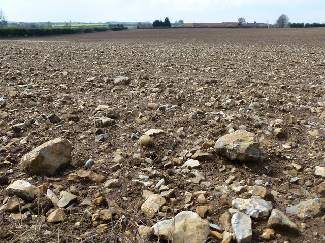 Image result for and some seed fell on good ground