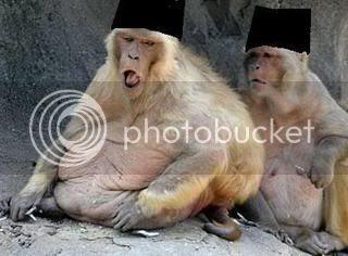 http://i986.photobucket.com/albums/ae343/toirtap/050508-monkey-404_668094c.jpg