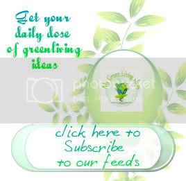 Subscribe to My green Living Ideas by Email