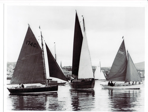Katydid in the 1970's