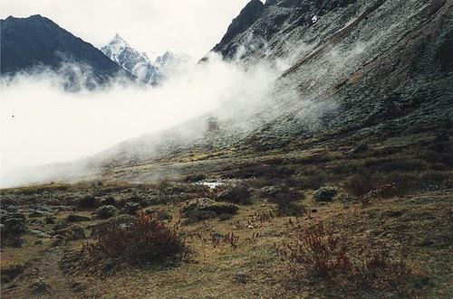 Djesi pass in cloud