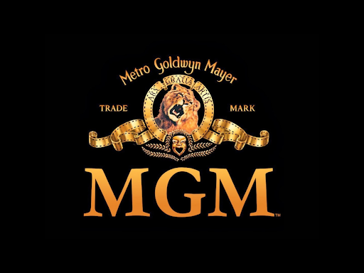 Image result for mgm logo