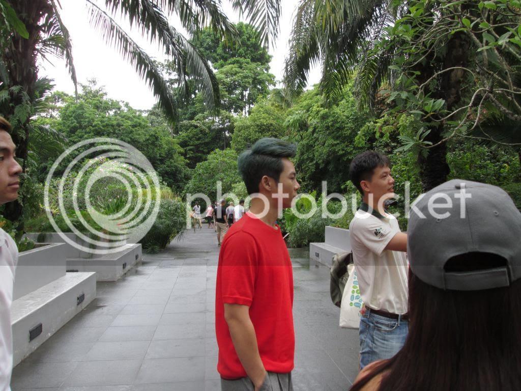 photo SingaporeBotanicGardensIssacDang14.jpg