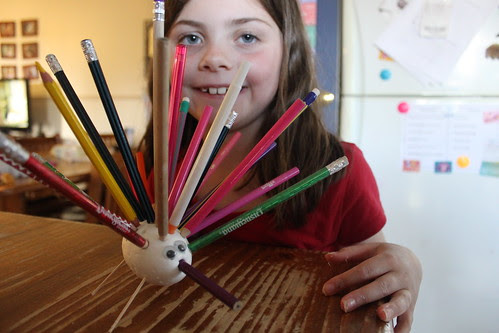 Esther's pencil echidna
