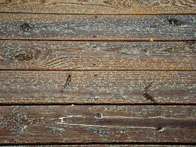 Deck floor after rain
