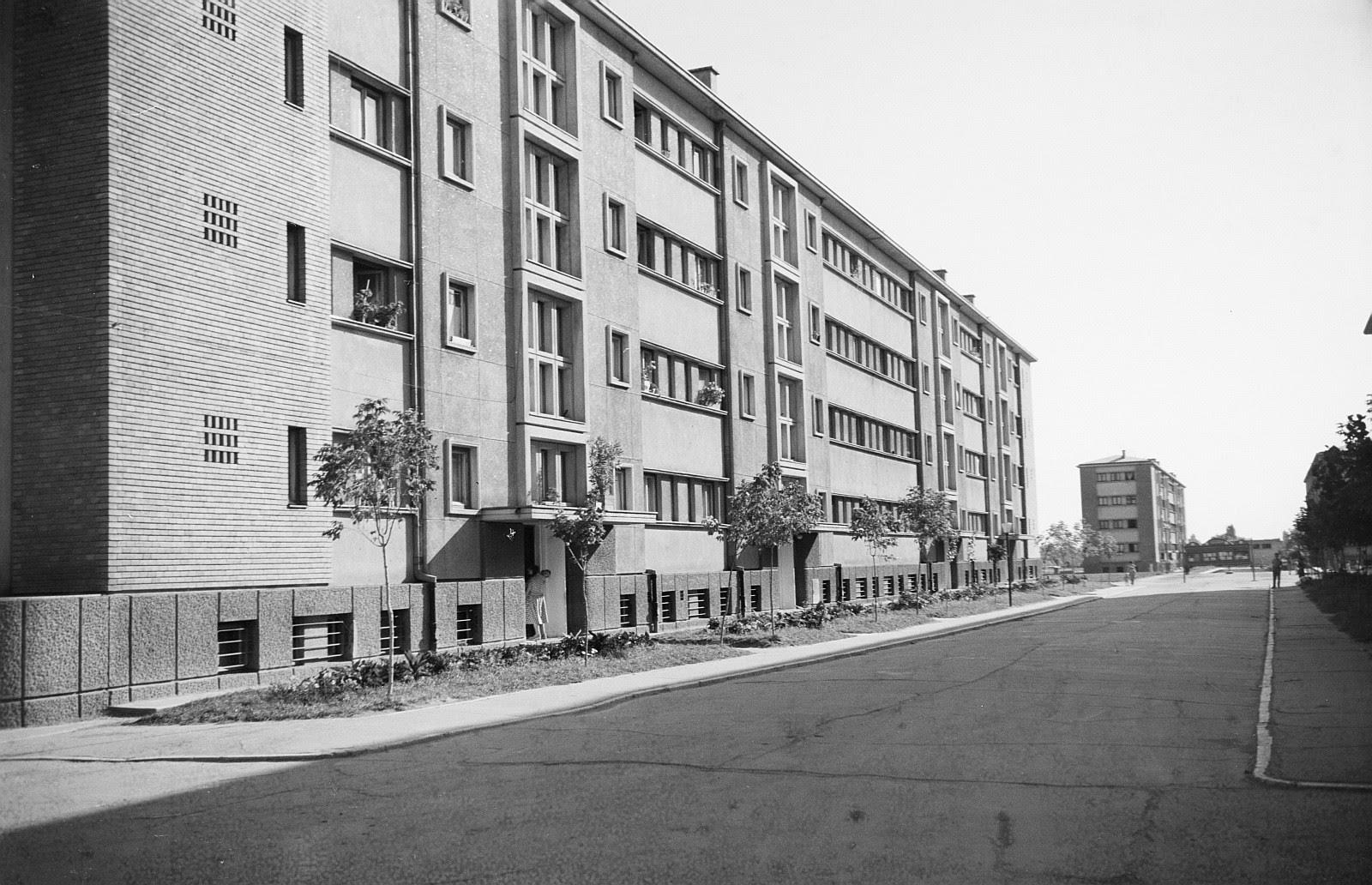 1956 ferentari 01