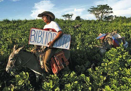 Biblioburros: Luis Soriano, Alfa and Beto