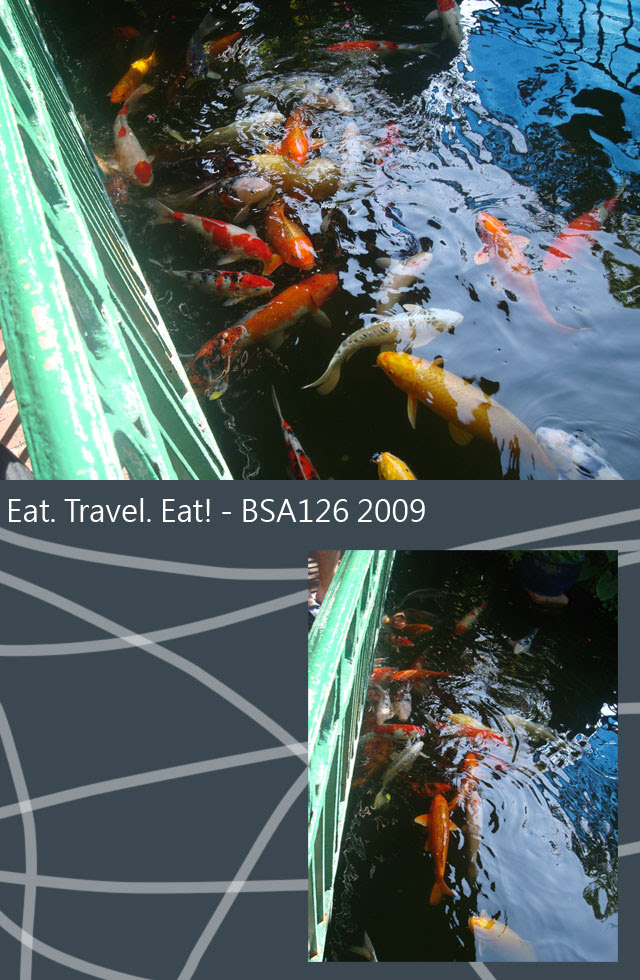Fish-Pond-2