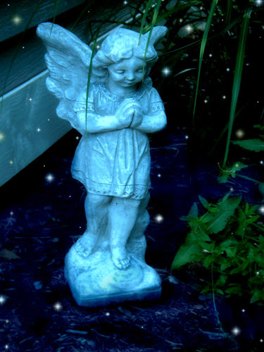 Fairy In My Garden!