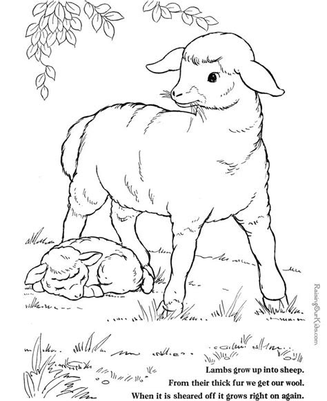 sheep coloring page farm animals  print  color