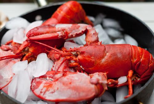 3_Lobster_Chowder