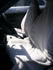 Sunshine on the Seat Covers