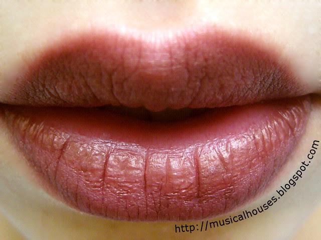 wet n wild 666 brandywine lip liner swatch 2