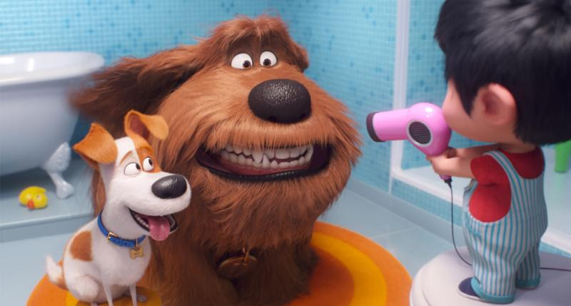 Good dogs fetch family fun in 'The Secret Life of Pets 2 ...