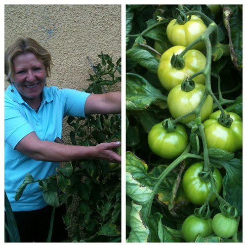 Karin's Tomatoes