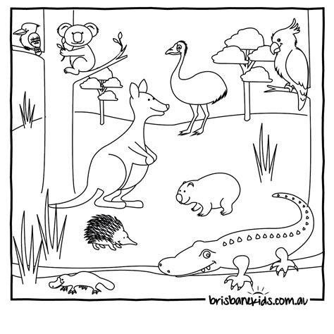 australian animals colouring pages brisbane kids