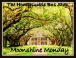 The Honeysuckle Bus Stop