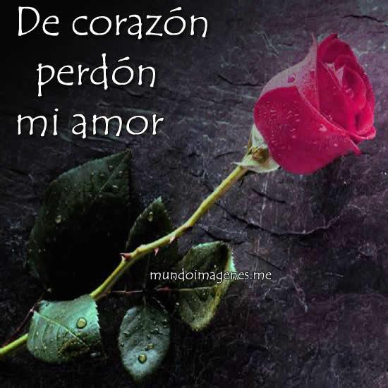 Palabras De Amor Perdoname Dogmagazine