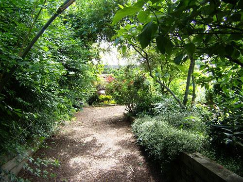P5200206-Habersham-Gardens-Pathway