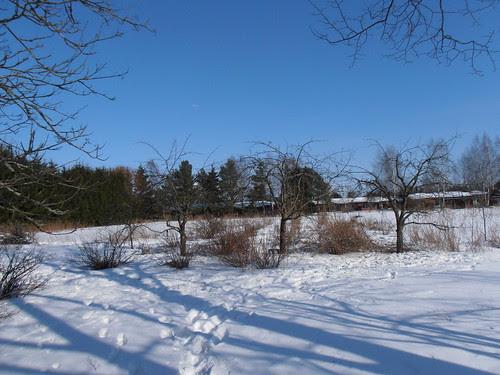 talvi2012 351