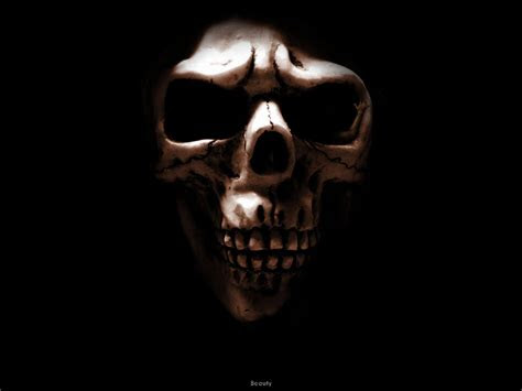 skull wallpapers wallpapers