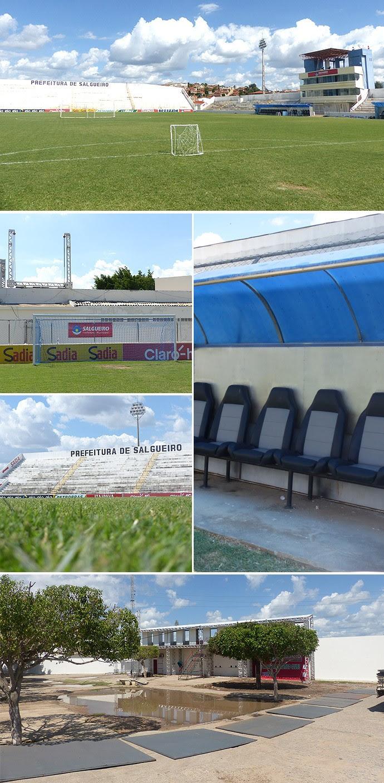 Montagem Estádio Salgueiro (Foto: Cahê Mota)