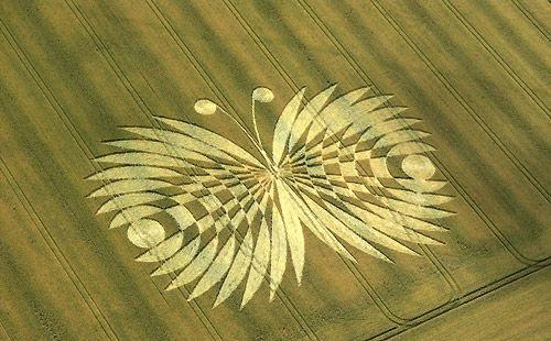 http://www.lotus-ocean.net/butterflyeffect.jpg