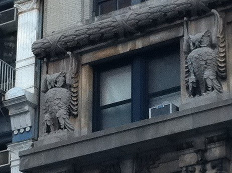 owls, Merchants Building