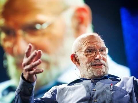 Top 10 neuroscience TED talks