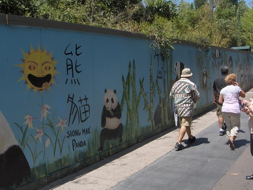 At night the pandas create colorful graffiti
