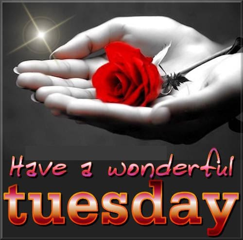 Have A Wonderful Tuesday Pictures Photos And Images For Facebook