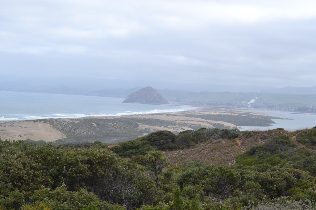 Morro Bay as Seen from Montana De Oro State Park Sand Dunes