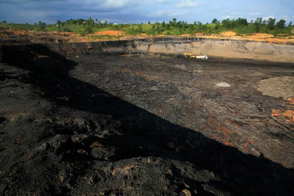 Korupsi Tambang di Bukit Suharto Potensi Kerugian Negara