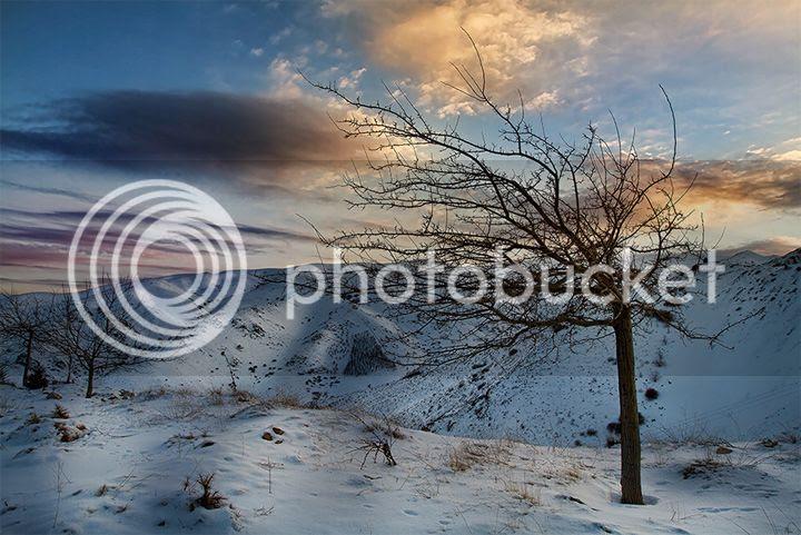 photo Hamid-Reza-Farzandian-3_zps938cd294.jpg
