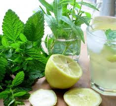 Lemon Balm Lemonade
