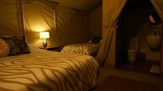 Photos of Wildebeest Eco Camp, Nairobi