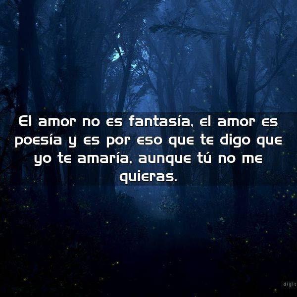 El Amor No Es Fantasia El Amor Frases Con Imagenes