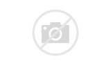 Stroller Rental Disney Pictures