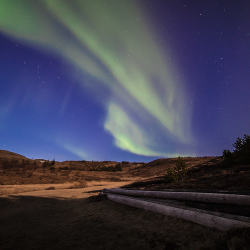 Norðurljós/Northern lights/Aurora borealis (CV0A0892)