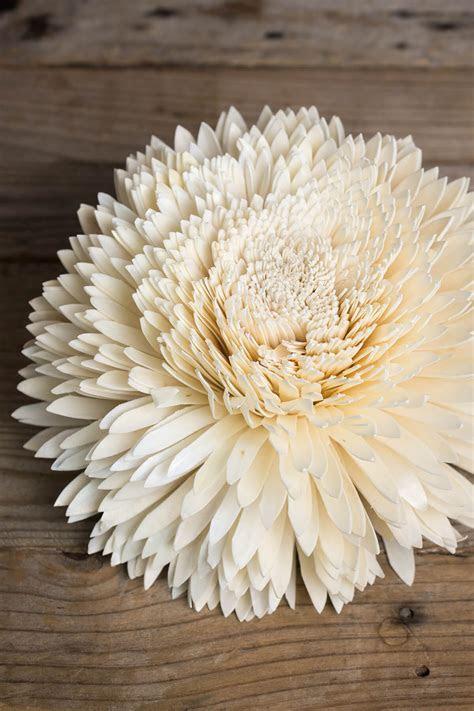"Large 11"" Sola Zinnia Flower"